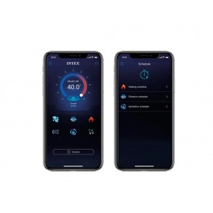 Uszczelka do pomp z filtrem A 10325 Intex Pool Garden Party